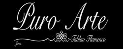 TABLAO PURO ARTE JEREZ